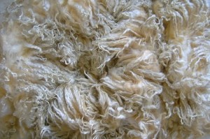 Fleecewood Leicester Lamb Fleece