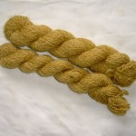 Honey gold English Leicester - 10 ply