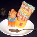 Egg Cosy
